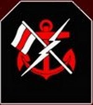 Les insignes de spécialité de la ZM-FN N1070611