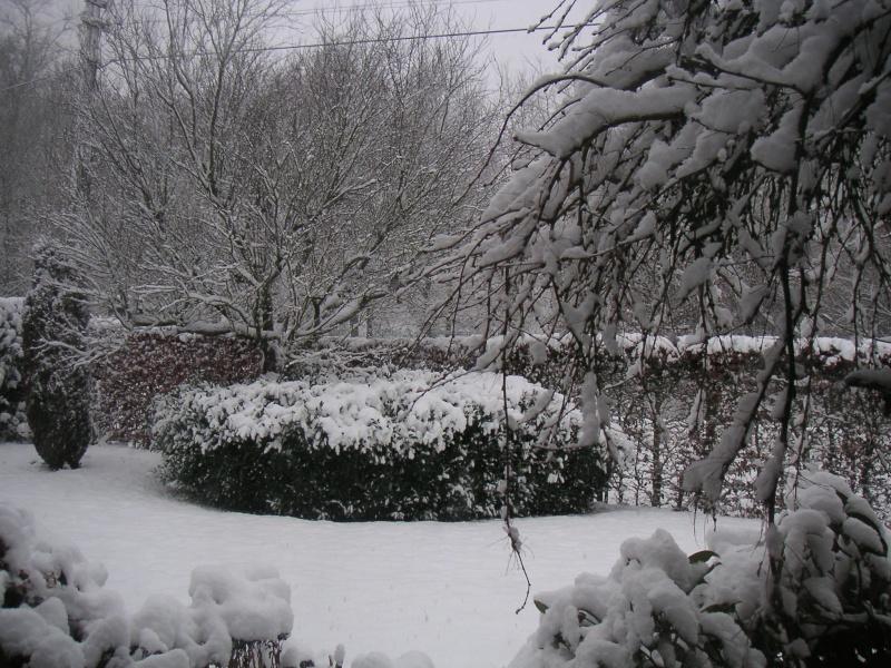 Photos de neige du coté de chez vous - Page 3 Noel1_10