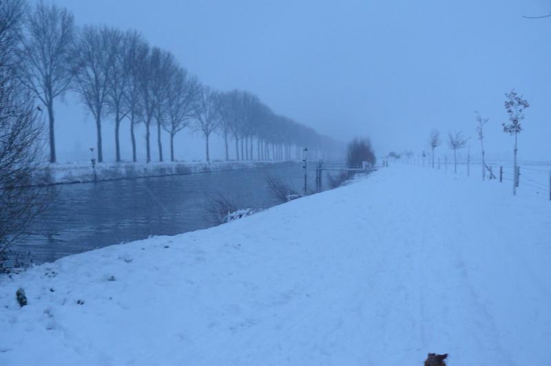 Photos de neige du coté de chez vous - Page 3 Noel_012