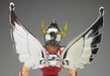 Pegasus Seya Img_0102