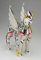 Pegasus Seya Img_0111