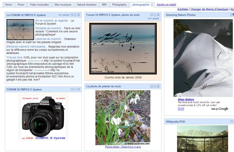 Commentaires sur le concours, photos hors concours du mois de JANVIER 2009 - Page 3 Igoogl10