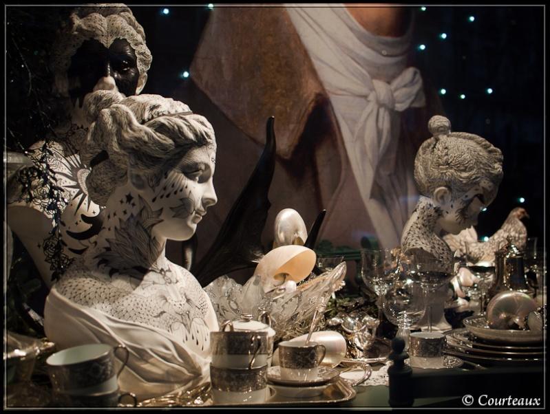 Discussions sur le thème et photos hors concours du mois de décembre 2010 - Page 2 Vitrin14