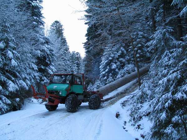 unimog mb-trac wf-trac pour utilisation forestière dans le monde - Page 2 Bois210