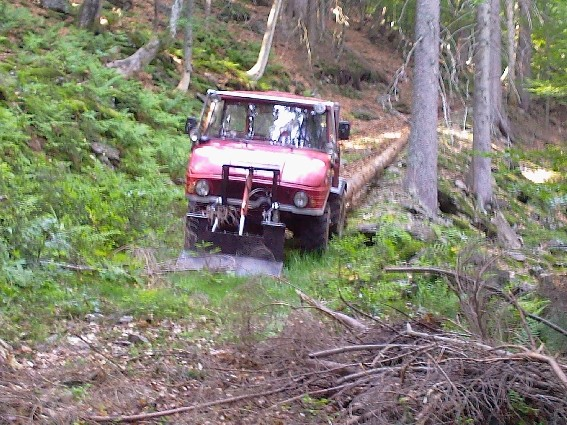unimog mb-trac wf-trac pour utilisation forestière dans le monde - Page 2 Forst310