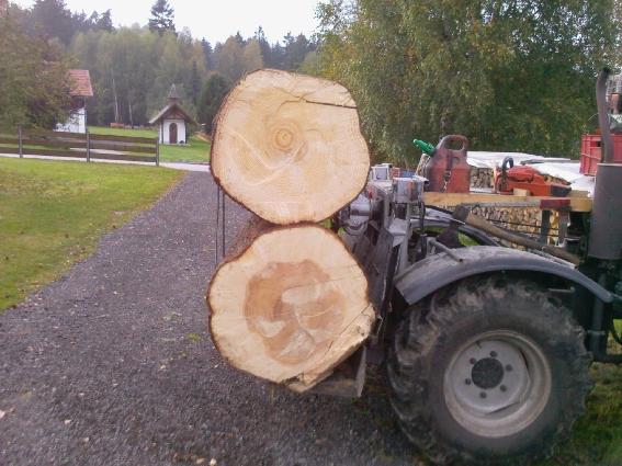 unimog mb-trac wf-trac pour utilisation forestière dans le monde - Page 2 Forst410