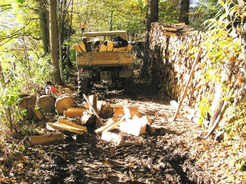 unimog mb-trac wf-trac pour utilisation forestière dans le monde - Page 4 Grotef10
