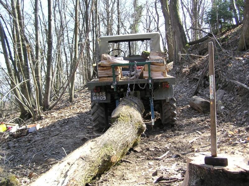 unimog mb-trac wf-trac pour utilisation forestière dans le monde - Page 4 Grotef11