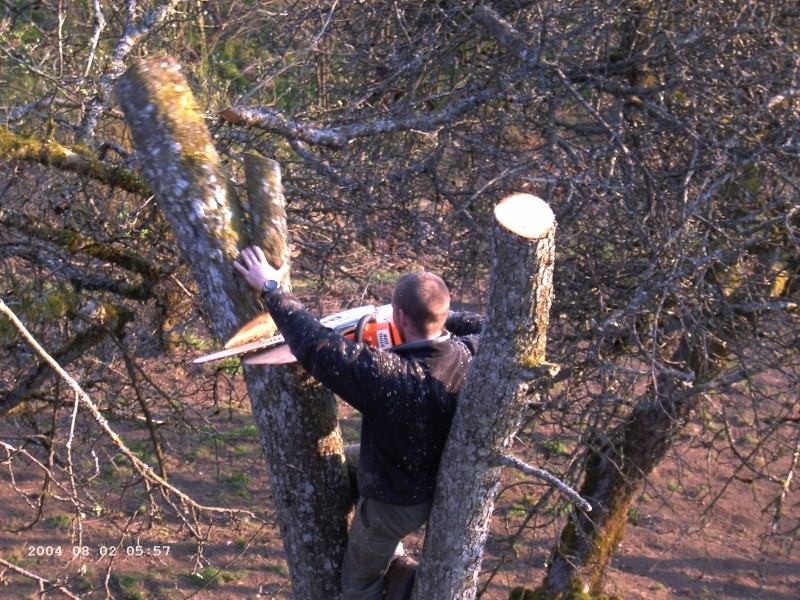 quad forestier ! Re_sam10