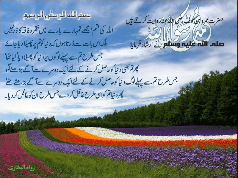 Dunya Ki Talab Dunya_10