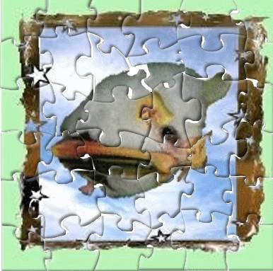 [TERMINER]Puzzle Anniversaire Blackhawk Puzzle10