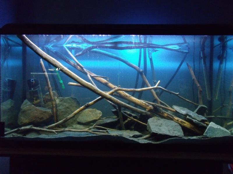 Aquashop.ca: photos utilisées sur le site web et demande de vos photos Dscf1710