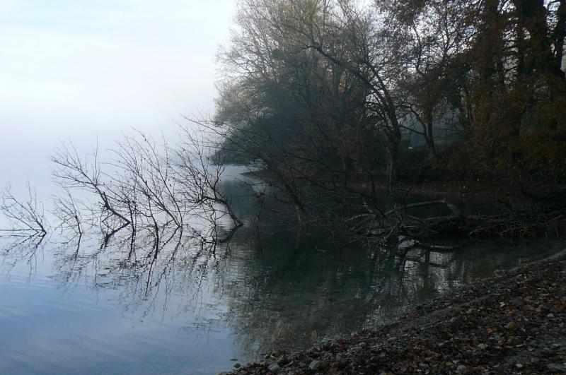 Petite Ballade en Isère... P1070710