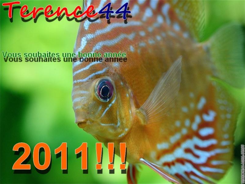 bonne année à tous Bonen_10