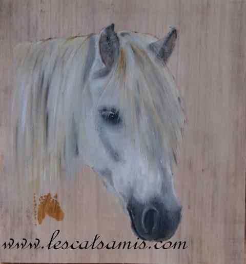 Cathy peintre animalier - Page 5 Poney_10