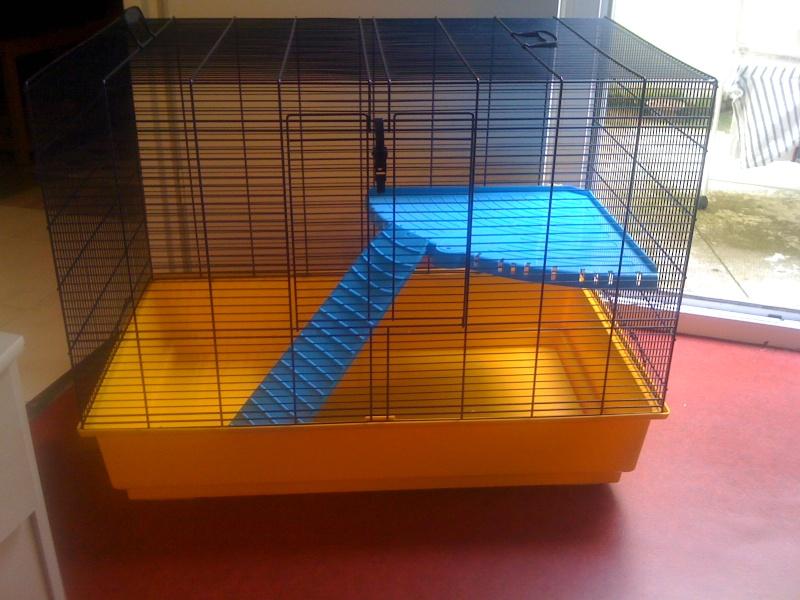 Cage freddy 2 / rhones alpes  00912