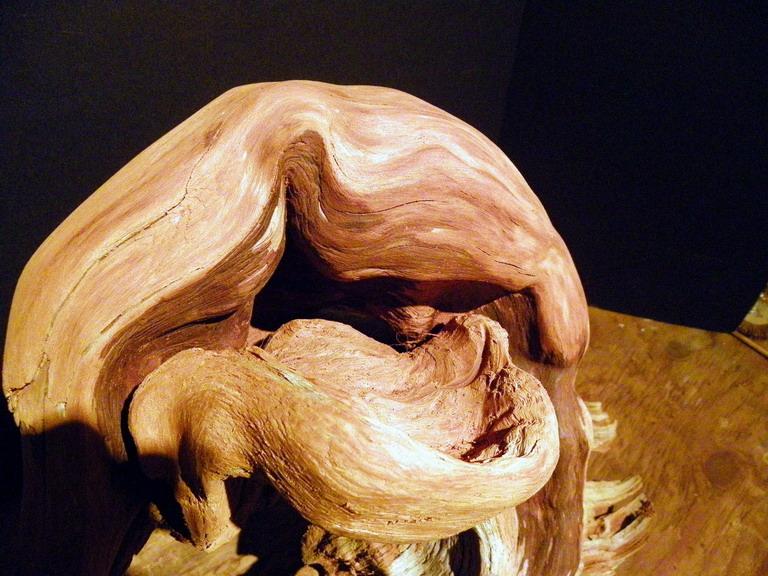 Using Wood - Wooden Pots etc Phoeni11
