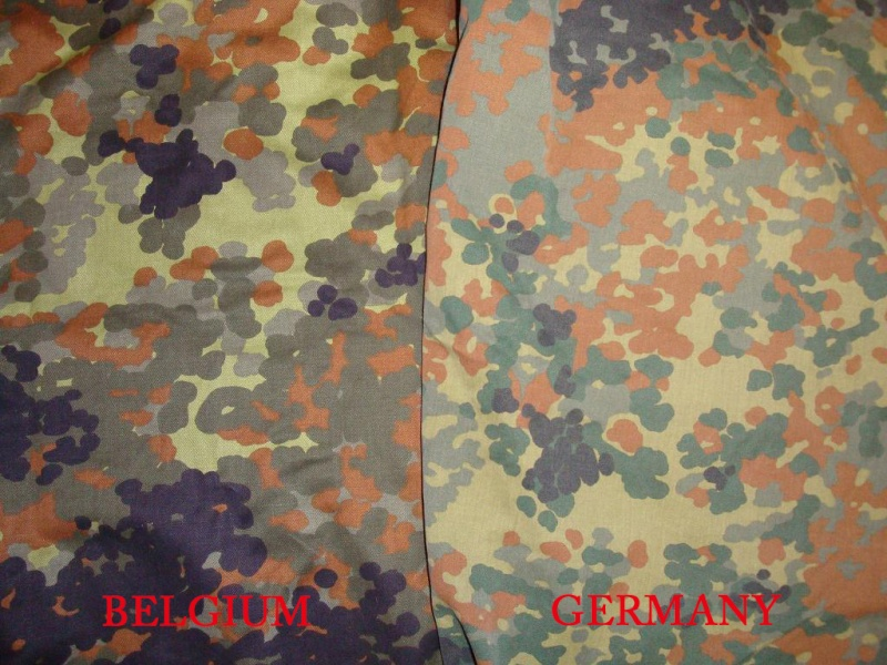 BELGIUM FLECKTARN vs. GERMANY FLECKTARN Belgiu12