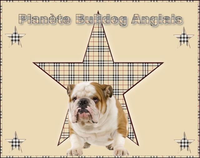 Planète Bulldog