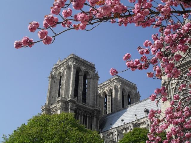 Paris en couleurs , Paris en noir et blanc ! Sdc10822