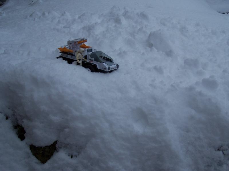 la galerie de cobra Snow_c10
