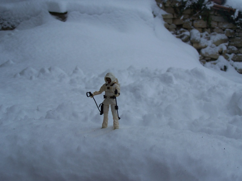 la galerie de cobra Snow_j10