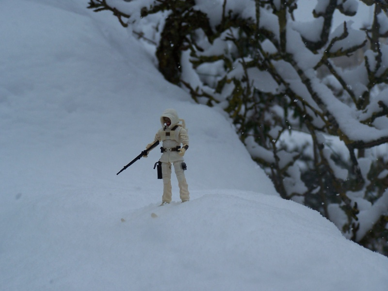 la galerie de cobra Snow_j14