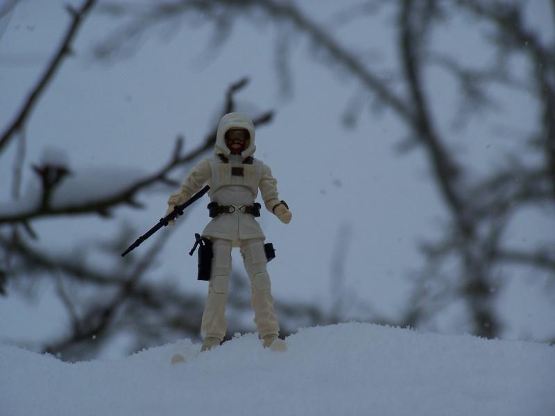 la galerie de cobra Snow_j16