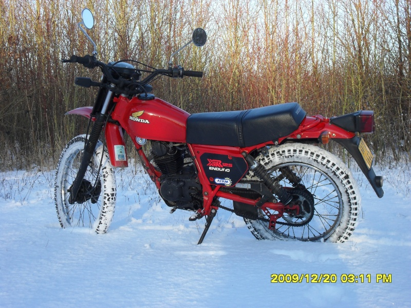 concours photo (janv 2010)votre timono et la neige 22510