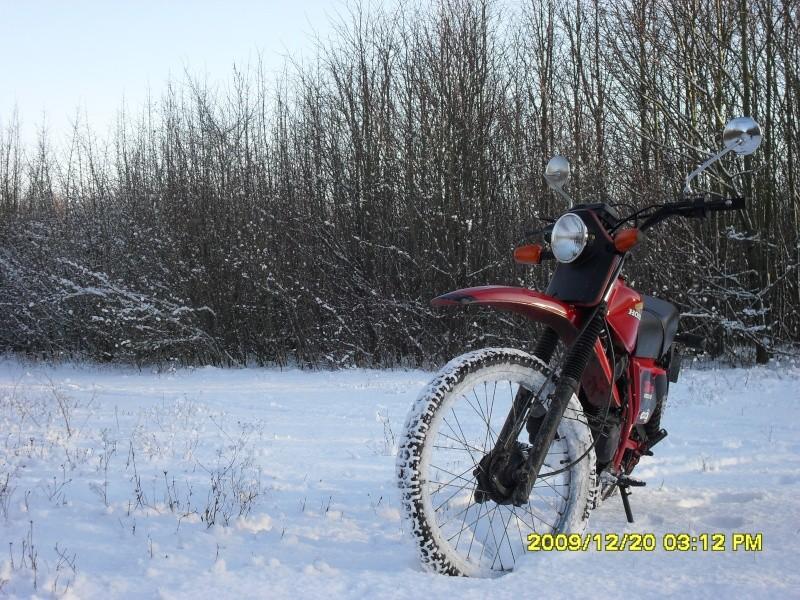 concours photo (janv 2010)votre timono et la neige 22712