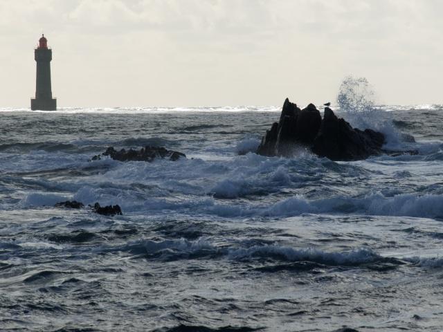 Ile de Ouessant , Bretagne P2282912