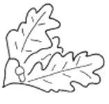"""Unité allemande: 250. Infanterie-Division """"Azul"""" Logo-i21"""
