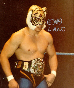 images library for tiger mask  Sayama10