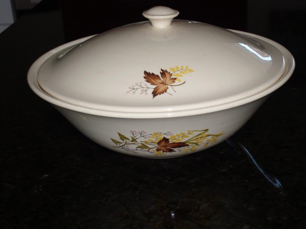 Autumn Splendour casserole Dsci8610