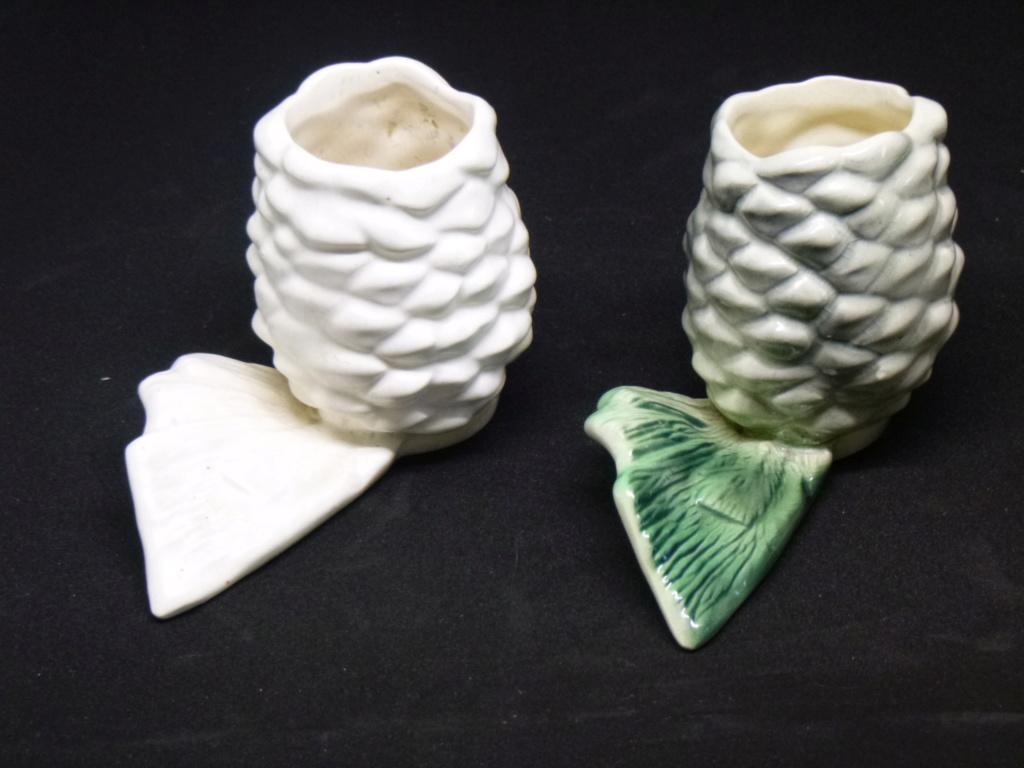 Coloured pine cone P1000210