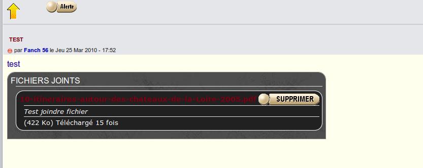 Astuce: Personnaliser le cadre des fichiers joints Captu171
