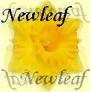 Free forum : Warrior Cats - Portal Newlea10