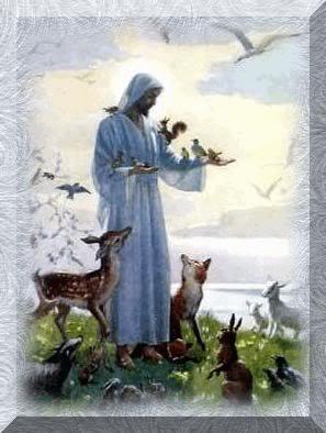 J sus que votre joie demeure dans nos coeurs page 2 for Dans nos coeurs 44