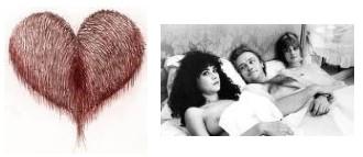Juxtapositions oulipiennes d'images - Poésie des contrastes Cochon10