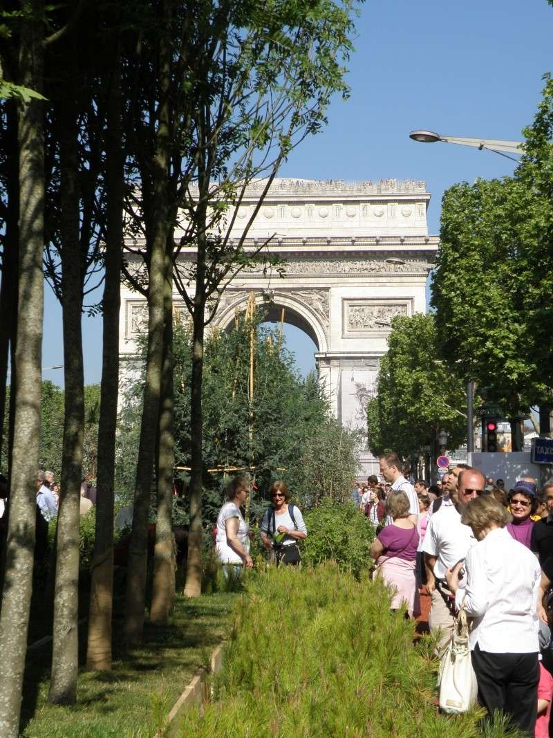 Les Champs Elysées méritent leur nom Paris_11