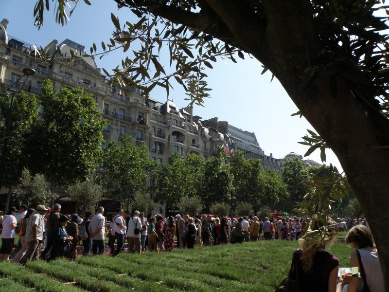 Les Champs Elysées méritent leur nom Paris_19