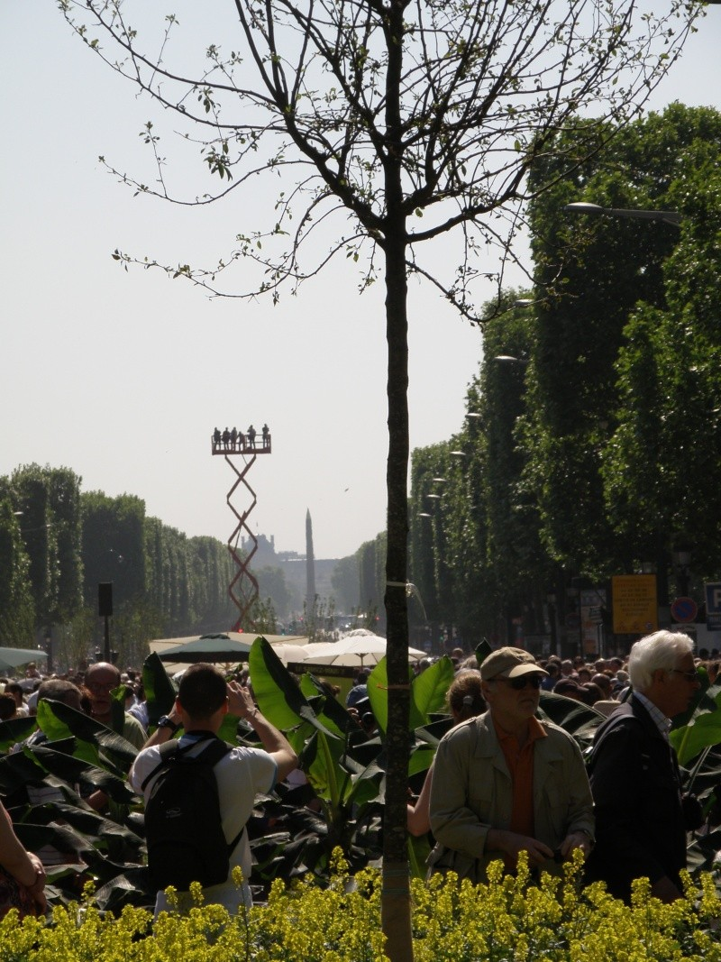 Les Champs Elysées méritent leur nom Paris_29