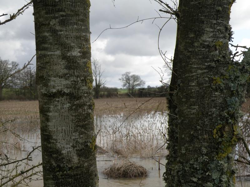 Février 2010 c'est aussi le mois des inondations!!! Vauvar34