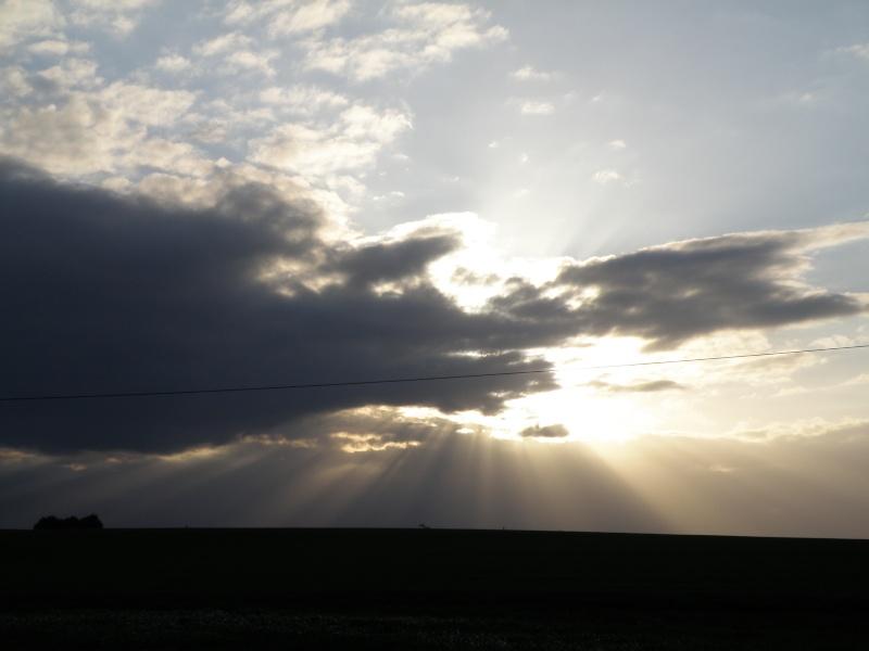 début avril 2010, Mayenne, presque un safari :-) Vauvar46