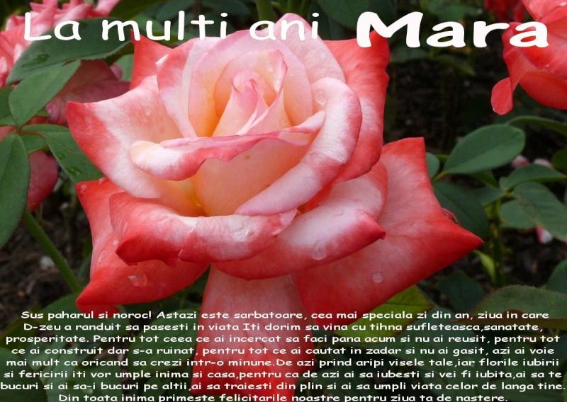 Mara Manolache-Sufletul Natura Clip_326
