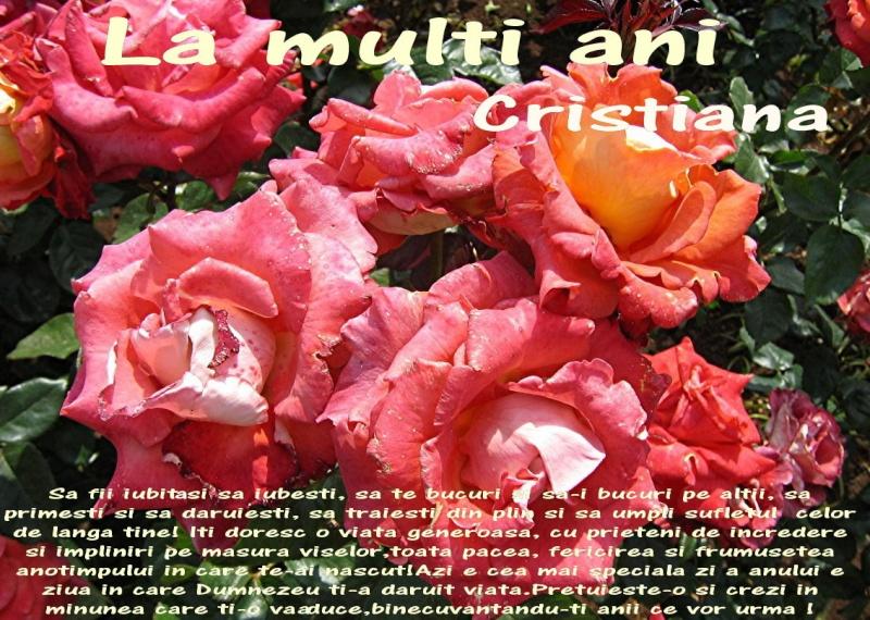 La Multi Ani ! Cristi12