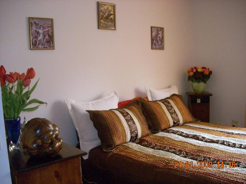 Amenajare locuinta  in stil baroc-Elvetia Dormit10