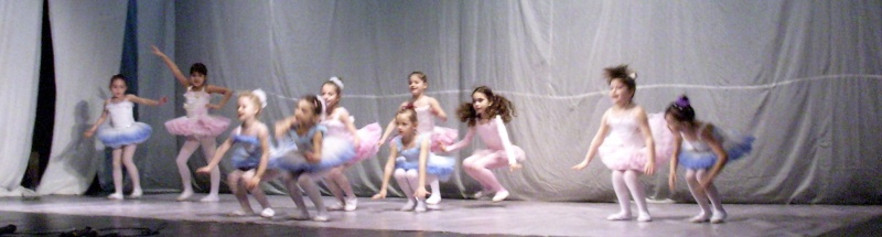 De Florii  28 martie 2010-Varietati la Ateneu Florii27