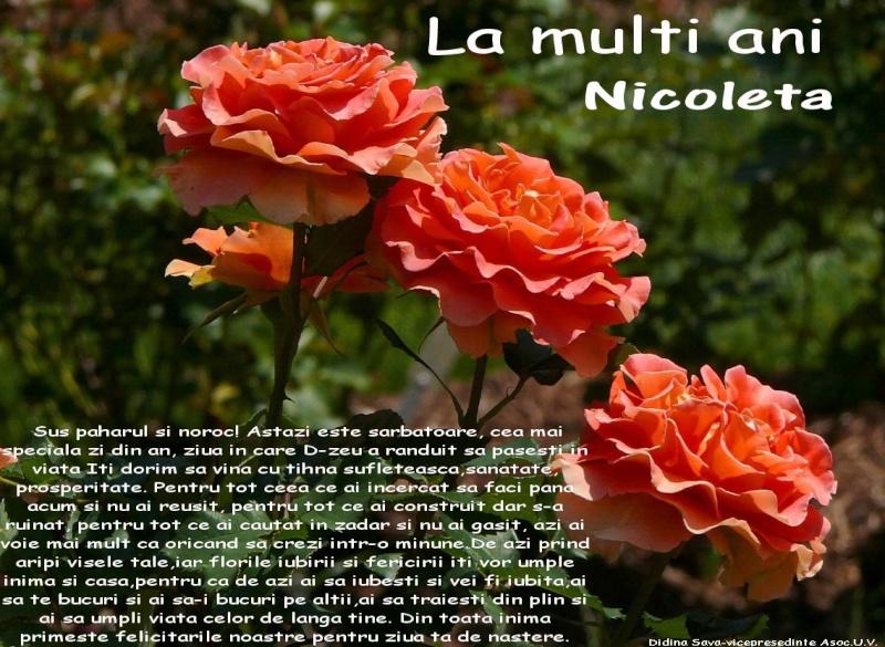 """Zilele """"Scolii Ion Simionescu"""" din Iasi Nicole10"""