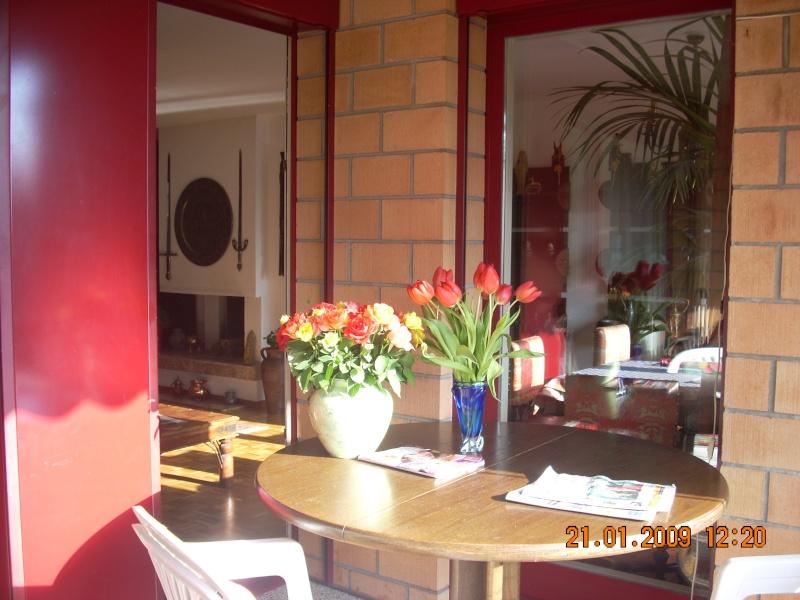 Amenajare locuinta  in stil baroc-Elvetia Pe_ter10